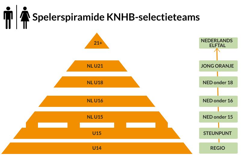 Spelerspiramide KNHB selectieteams